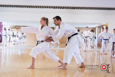 Karate Kurs für Jugend und Erwachsene