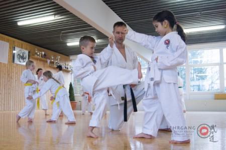 Karate Kinder Kurs