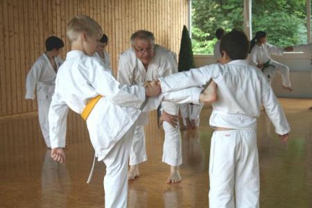karate-rolf-2012